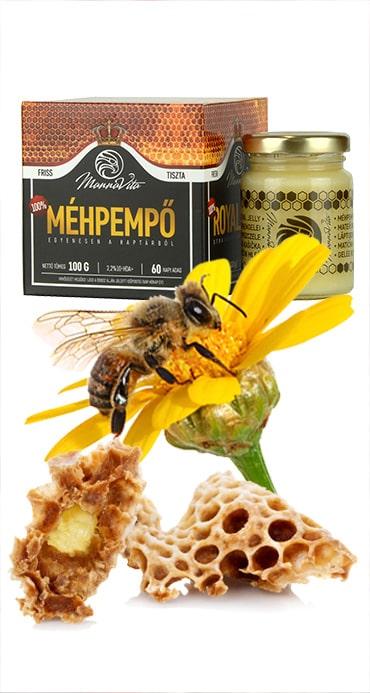 méhpempő magas vérnyomás
